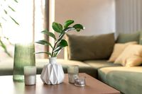 Relaxing time at comfort green interior loft house, vase with zamioculcas