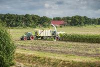 Corn harvest vehicles distant view phase 3