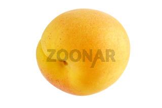 Aprikose - reif und fruchtig - freigestellt