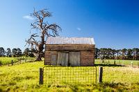 Rural Landscape in Victoria Australia