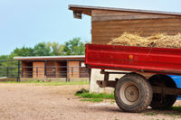 Red truck trailer with hay parked on farm, blurred stables background