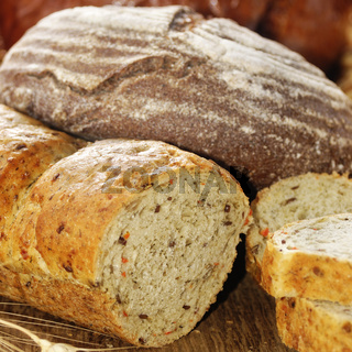Different kinds of bread