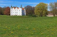 Schloss Ahrensburg, Wiese mit Löwenzahn