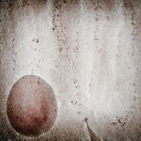 egg old grunge paper texture