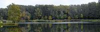 Badeteich mit bewaldetem Ufer