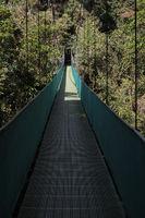 Hängebrücke im Regenwald