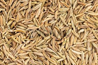 Cumin seeds background texture. Cuminum cyminum