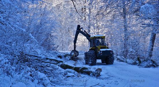 Holzernte im Winter auf der Schwäbischen Alb