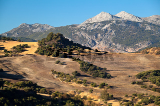 Mountains and fields in Andalucia