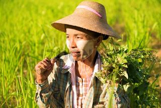 Traditional Asian female farmer