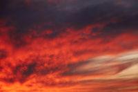 Sky light after sunset. orange background
