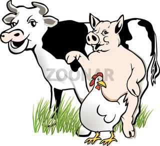 schwein, kuh, huhn.jpg