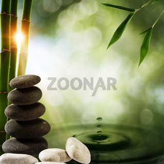Abstract eco backgrounds with bamboo and water splash