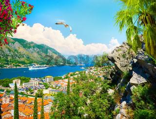 Kotor Bay in summer