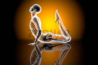 Yoga Pose - King Cobra