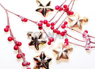Red beery with christmas golden stars