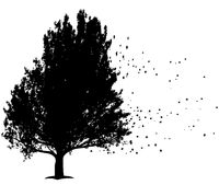 black tree with flying leafs, symbol for sorrow