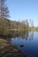 Weiher bei Muenster-Breitefeld
