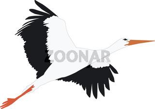 Storch fliegt nach oben