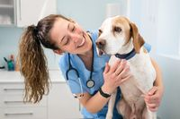 Young happy veterinary nurse smiling while playing with a dog.