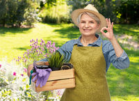 old woman with garden tools in box showing ok