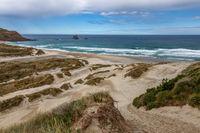 Bay of Flying Sand on the Otagao Peninsula Southen New Zealand
