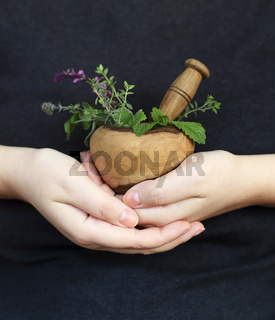 Crop woman showing mortar with pestle and herbs