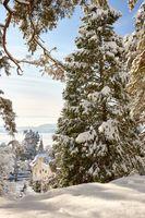 A21_0318_winter_ueberlingen