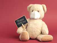 Hold on, Teddy bear with protective mask holds sign