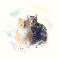 Fluffy red and brown cats . Digital illustration.
