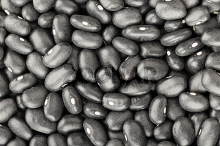 Black turtle bean background texture. Phaseolus vulgaris