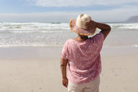 Rear view of senior african american woman standing on the beach