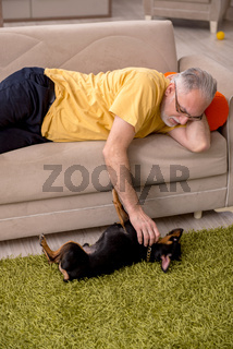 Aged man with little dog at home