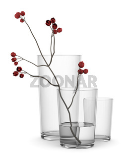 red flower in glass vase isolated on white background