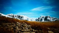 dry grass and snow covered mountains in Alaska