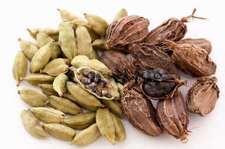 Green and black cardamom seed as closeup on white background