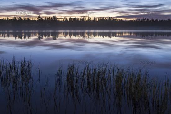 Abendstimmung an einem Waldsee, Lappland, Schweden