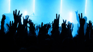 Fans im Konzert
