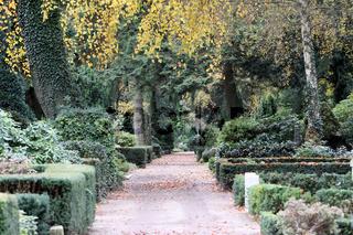 alter Friedhof Niendorf