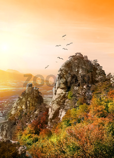 Birds over the Valley of Ghosts