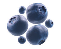 Ripe blueberries levitate on a white background