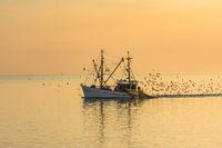 Fischkutter auf der Nordsee, Büsum, Schleswig-Holstein, Deutschland