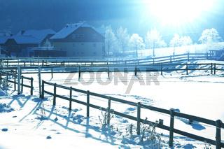 Winter in Alp