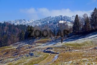 Kalter Fruehlingsmorgen in den Allgaeuer Alpen