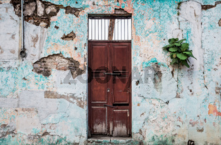 Aged abandoned colonial building with plants growing out of the cracked walls, Antigua, Guatemala
