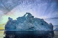 floating glaciers at fjord Disco Bay West Greenland with bird