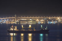 Anchored ore carrier at night. In the background: MS 'The World', moored at the port of Aqaba, Jordan