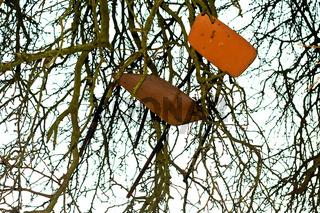 Stuhl, Baum