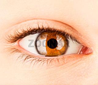 Human eye close up ...