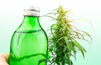 Bottle with CBD cannabis infused drink against cannabis plant, cannabis in food and drink industry